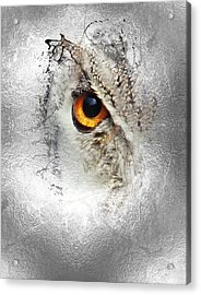 Acrylic Print featuring the photograph Eye Of The Owl 1 by Fran Riley