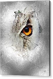 Acrylic Print featuring the photograph Eye Of The Owl 2 by Fran Riley