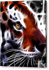 Eye Of The Tiger 2 Acrylic Print by Wingsdomain Art and Photography
