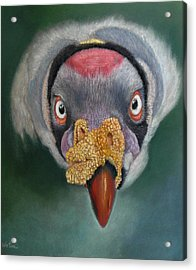 Acrylic Print featuring the painting Eye To Eye Encounter by Ceci Watson