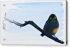 Acrylic Print featuring the painting Eye To Eye With Silvereye by Ivana Westin