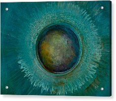 Eyesteroid Acrylic Print by Art by Ela