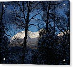 Faawinter001 Acrylic Print