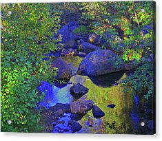 Acrylic Print featuring the photograph Face In The Creek by Tammy Sutherland