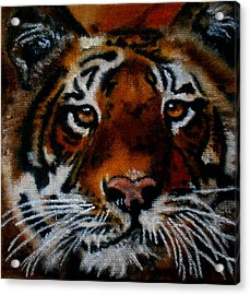 Face Of A Tiger Acrylic Print