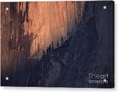 Face Of Half Dome Acrylic Print by Stan and Anne Foster