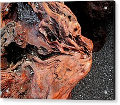 Faces In The Wood #5 - Lion King Acrylic Print