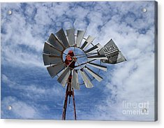 Acrylic Print featuring the photograph Facing Into The Breeze by Stephen Mitchell