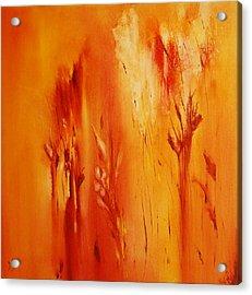 Faded Glory Acrylic Print by Larry Ney  II