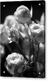 Faded Rose Acrylic Print