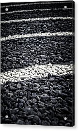 Fading In And Out Acrylic Print