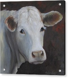 Fair Lady Cow Painting Acrylic Print by Cheri Wollenberg