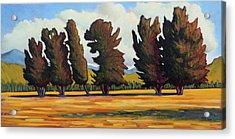 Fairfield Tree Row Acrylic Print