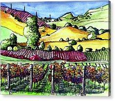Fairfield Vineyards Acrylic Print