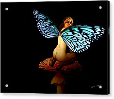 Fairy A Second Look Acrylic Print by Tray Mead