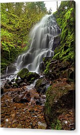 Fairy Falls In Columbia Gorge Acrylic Print by David Gn