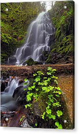 Fairy Falls In Spring Acrylic Print by David Gn