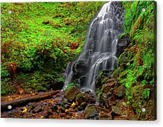 Fairy Falls Oregon Acrylic Print by Jonathan Davison