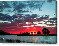Fairy Floss Skies  Acrylic Print by Naomi Burgess