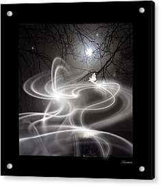 Fairy Fog Acrylic Print by Maggie  Smith