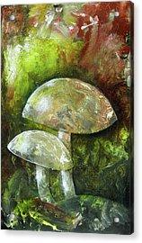 Fairy Kingdom Toadstool Acrylic Print