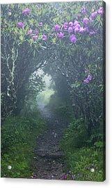 Fairy Path Acrylic Print