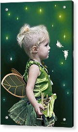 Fairy Princess Acrylic Print by Brian Wallace