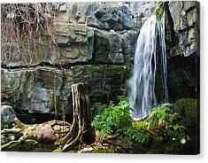 Fairy Waterfall Acrylic Print by Douglas Barnett