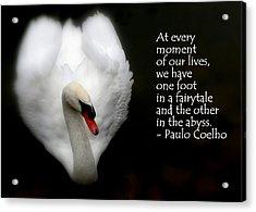 Acrylic Print featuring the photograph Fairytale Swan by Lainie Wrightson