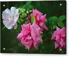 Fake Painting Of Roses Acrylic Print