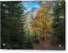 Falkenstain, Saxonian Switzerland Acrylic Print