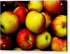 Fall Apples Acrylic Print by Dennis Curry
