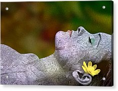Acrylic Print featuring the digital art Fall Asleep by Tom Romeo