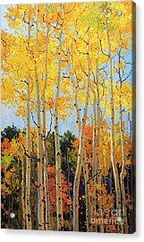 Fall Aspen Santa Fe Acrylic Print by Gary Kim