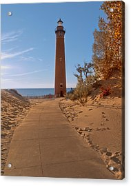 Fall At Little Point Sable Light Acrylic Print