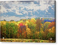 Acrylic Print featuring the photograph Fall At Shaw by David Coblitz