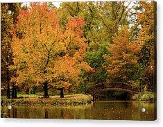 Fall At The Arboretum Acrylic Print