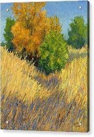 Fall Begins Acrylic Print by David King