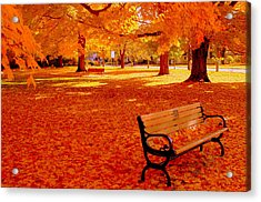 Fall Bench  Newburyport Ma Acrylic Print by Suzanne DeGeorge
