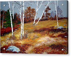 Fall Birch Trees And Blueberries Acrylic Print by Laura Tasheiko