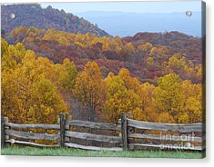 Acrylic Print featuring the photograph Fall Blend by Eric Liller