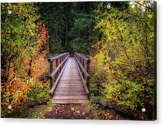 Acrylic Print featuring the photograph Fall Bridge by Cat Connor
