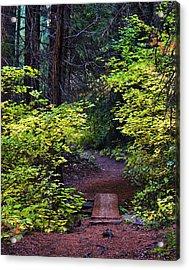 Metolius River Trail Fall Bridge Acrylic Print