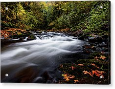 Fall Color At Cedar Creek Acrylic Print