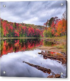 Acrylic Print featuring the photograph Fall Color At The Pond by David Patterson