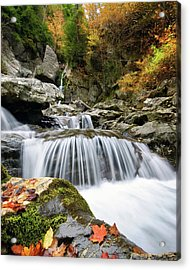 Fall Color Bash Acrylic Print