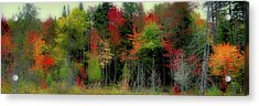 Acrylic Print featuring the photograph Fall Color Panorama by David Patterson