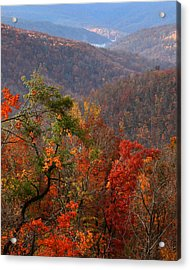 Acrylic Print featuring the photograph Fall Color Ponca Arkansas by Michael Dougherty