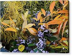 Acrylic Print featuring the photograph Fall Color Soup by Deborah  Crew-Johnson
