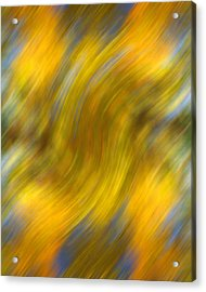 Fall Colors Abstract Acrylic Print by Bob Coates